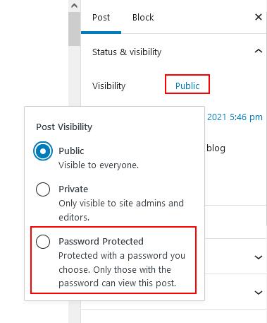 Gutenberg Editor Password Protected Option